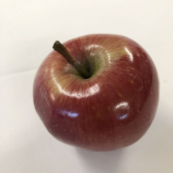 Apple Red Gala each